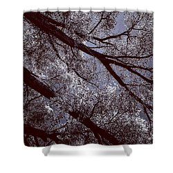 Cottonwood Energies Shower Curtain