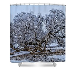 Cottonwood Sprawl Shower Curtain