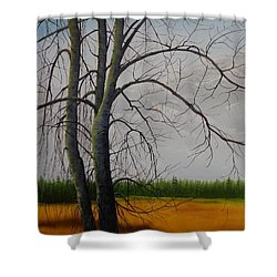 Cottonwoods Shower Curtain