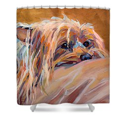 Couch Potato Shower Curtain by Kimberly Santini