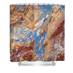 Couleurs De Cuivre I Shower Curtain by Karen Stephenson