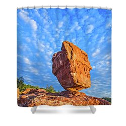 Counterpoise  Shower Curtain by Bijan Pirnia