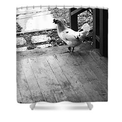 Country Chicken Shower Curtain