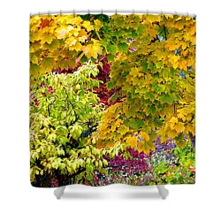 Country Color 15 Shower Curtain