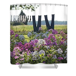 Country Laundry Shower Curtain by Lauri Novak