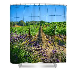 Country Lavender V Shower Curtain