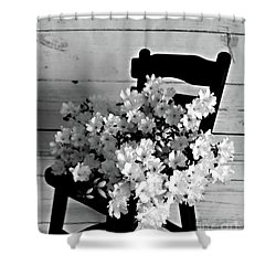 Country Porch In B And W Shower Curtain by Sherry Hallemeier