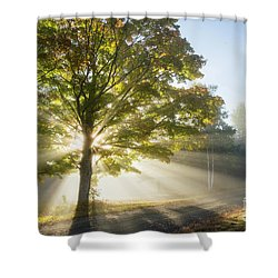 Country Road Shower Curtain by Alana Ranney