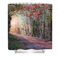 Country Road Shower Curtain by Bill Stephens