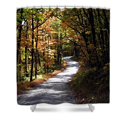 Shower Curtain featuring the photograph Country Road by David Dehner