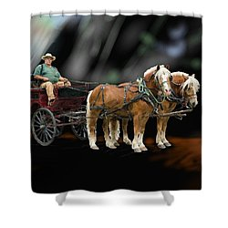 Country Road Horse And Wagon Shower Curtain