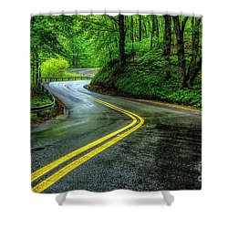 Country Road In Spring Rain Shower Curtain