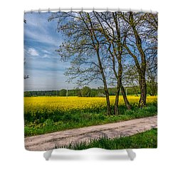 Country Road In The Rapeseed Field Shower Curtain