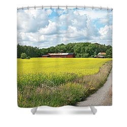 Country Road In Yellow Meadow Shower Curtain