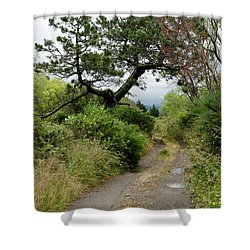Country Road. New Zealand Shower Curtain