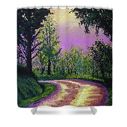 Country Road Shower Curtain by Stan Hamilton