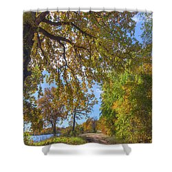 Country Road Shower Curtain by Tim Fitzharris