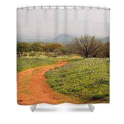 Country Road With Wild Flowers Shower Curtain