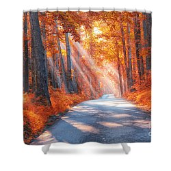 Country Roads Shower Curtain by Geraldine DeBoer