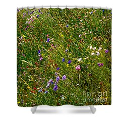 Country Wildflowers I   Shower Curtain