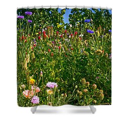 Country Wildflowers IIi Shower Curtain
