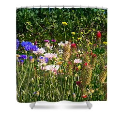 Country Wildflowers Iv Shower Curtain