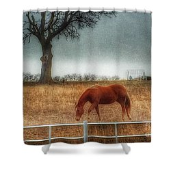 County Road 4100 Shower Curtain