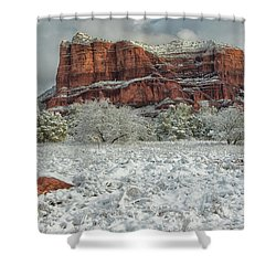 Courthouse In Winter Shower Curtain