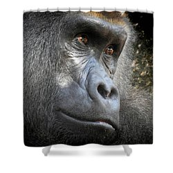 Cousin, No. 44 Shower Curtain