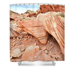 Shower Curtain featuring the photograph Cove Of Sandstone Shapes In Valley Of Fire by Ray Mathis