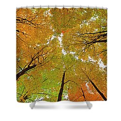 Shower Curtain featuring the photograph Cover Up by Tony Beck