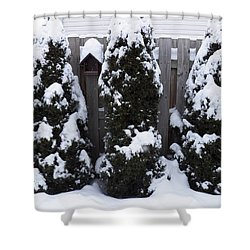Covered In Winter White Shower Curtain