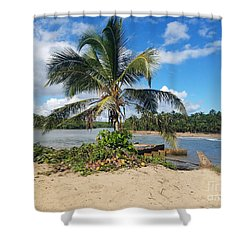 Covered Palm Beach Shower Curtain
