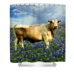 Shower Curtain featuring the photograph Cow And Bluebonnets by Barbara Tristan