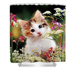 Cow Parsley Cat Shower Curtain