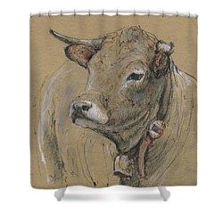 Cow Portrait Painting Shower Curtain