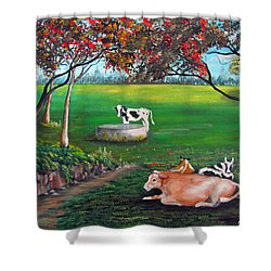 Cow Tales Shower Curtain