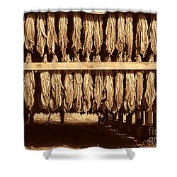 Cowboy Staple Shower Curtain by American West Legend By Olivier Le Queinec