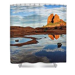 Cowpie 07-016p Shower Curtain by Scott McAllister