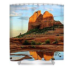 Cowpie 07-075 Shower Curtain by Scott McAllister