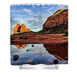 Cowpie 07-081 Shower Curtain by Scott McAllister