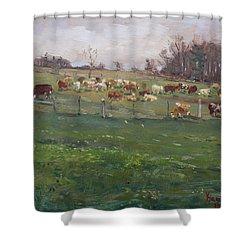 Cows In A Farm, Georgetown  Shower Curtain