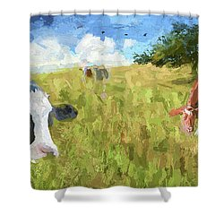 Cows In Field, Ver 2 Shower Curtain