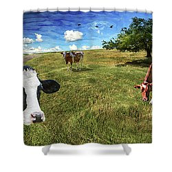 Cows In Field, Ver 3 Shower Curtain