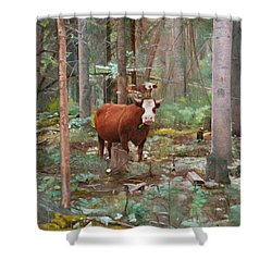 Cows In The Woods Shower Curtain by Joshua Martin