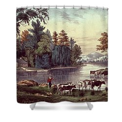 Cows On The Shore Of A Lake Shower Curtain by Currier and Ives