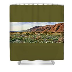 Coyote Canyon Sweet Light Shower Curtain by Daniel Hebard