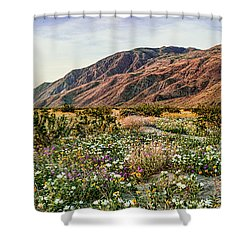 Coyote Canyon Sweet Light Shower Curtain