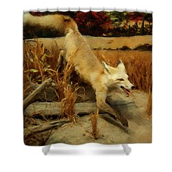Shower Curtain featuring the digital art Coyote  by Chris Flees