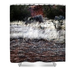 Shower Curtain featuring the photograph Coyote by Joseph Frank Baraba